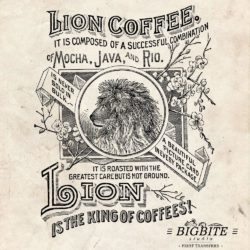 water-decal-print-transfer-_vintage-lion-coffee-advert01-01